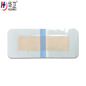 Medical Chitosan Dressing advanced wound care healing dressing